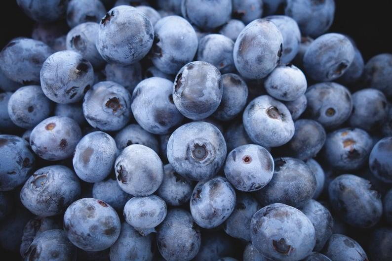 Blueberries, Fruit, Food, Berries, Blue, Organic, Diet