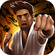 Ultimate Combat Fighting (game)