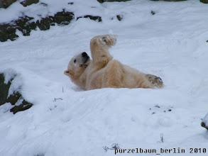 Photo: Bye for today wuenscht ein zufriedenes Geburtstagskind Knut :-)