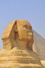 Photo: Head of Sphinx