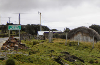 Photo: Plan B turned out to be great! We found Alpacas in the town of Apagua.
