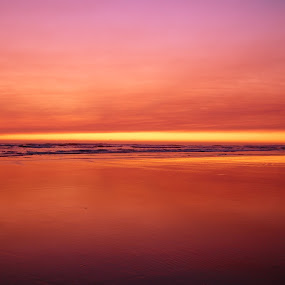 by Hallie Barta - Landscapes Waterscapes
