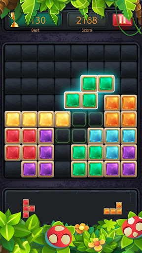 1010 Block Puzzle Game Classic apkmr screenshots 2
