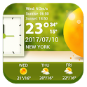 7 Day Weather Forecasts icon