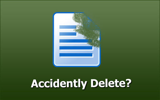 Video Image Data Recovery