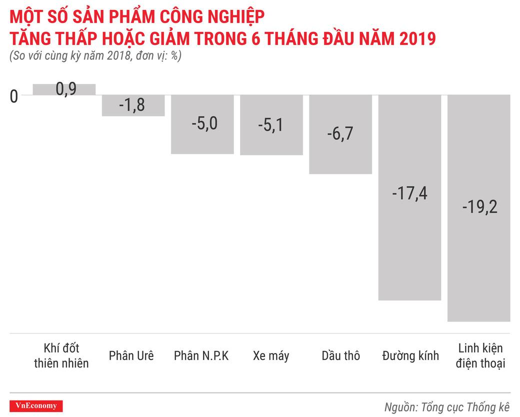 Kinh tế 6 tháng đầu năm 2019 qua các con số - Ảnh 8.