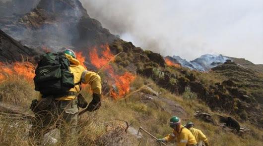 Doce almerienses compran un falso certificado de bombero forestal
