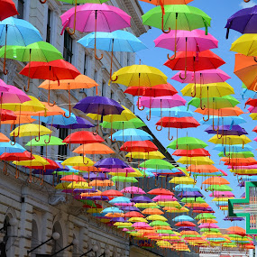 Umbrellas roof by Eugen Opritescu - City,  Street & Park  Street Scenes ( shop, decorative, colorful, handicraft, street, made, contest, equipment, travel, beauty, people, sun, artwork, multicolored, city, parade, sky, portuguese, sunny, tradition, parasol, ornament, weather, festival, portugal, anniversary, annual, editorial, decoration, texture, umbrella, art, traditional, tourism, variety, holiday, pattern, color, aveiro, popular, outdoor, background, artistic, day, walk, conceptual, culture, design,  )