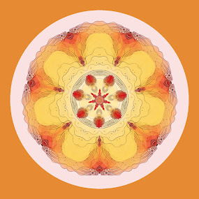 Chicken and Egg Mandala by Pam Blackstone - Illustration Abstract & Patterns