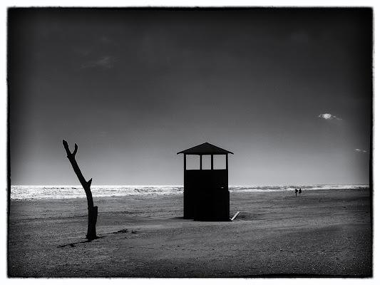 Walking on the dark side of the moon di Massimo Valentini