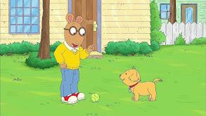 Show Off; Dog's Best Friend thumbnail