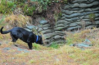 Photo: Vilma på vei ned i den mørke bunkersen