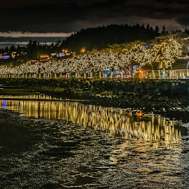 Beacon Of Light by Garry Dosa - City,  Street & Park  Night ( nightphotography, outdoors, reflections, buildings, night, waterfront, december, lights, low tide, colours,  )