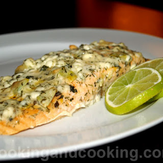 Salmon Fish with Cottage Cheese.