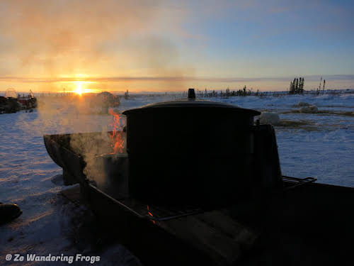 Arctic Canada Inuvik Winter Camping Tundra Dog Sledding // Morning coffee brewing, Western-style