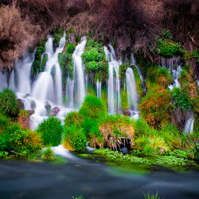 Thousand Springs Idaho by Charles Knowles - Landscapes Waterscapes ( idaho, waterfall, thousand springs )