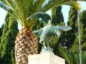 Photo: It.s5ITL112-141007Pompéï, palmier ou ananas... derrière l'aigle     P1000351