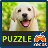 Labrador Retriever Dog Puzzle Android APK Download Free By XOGOS Lab