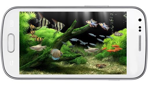 Aquarium Lucky LiveWallpaper