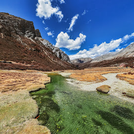 Yading Nature Reserve of Daocheng 稻城亚丁 by NC Wong - Landscapes Mountains & Hills ( yading, daocheng, 稻城亚丁, 洛絨牛場 )