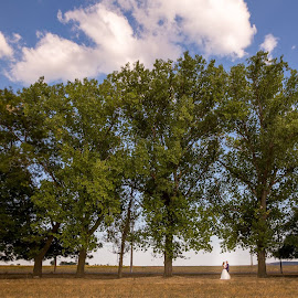 In to... by Adrian Penes - Wedding Other ( clouds, love, sky, session, green, wilde life, bride and groom, bride, groom )