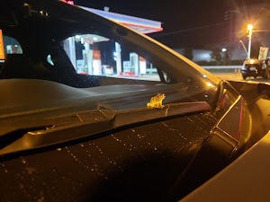 86 ZN6のカスタム事例画像 愛車大好き野郎さんの2020年10月04日22:02の投稿