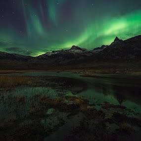 Kattfjord by Jon-Eirik Boholm - Landscapes Waterscapes ( aurora borealis, northern lights, norway,  )