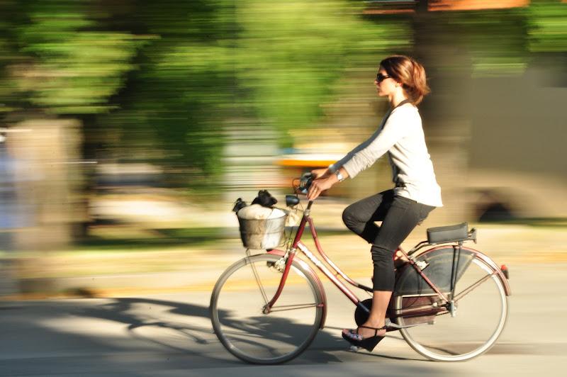 Al lavoro in bicicletta di Ilaria Bertini