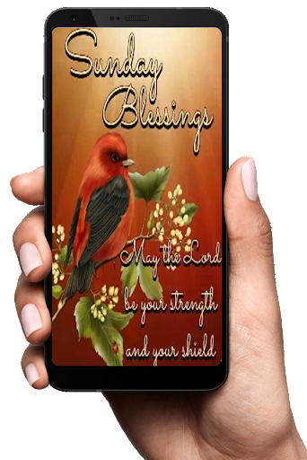 PC u7528 Everyday blessing and wishes quotes 2