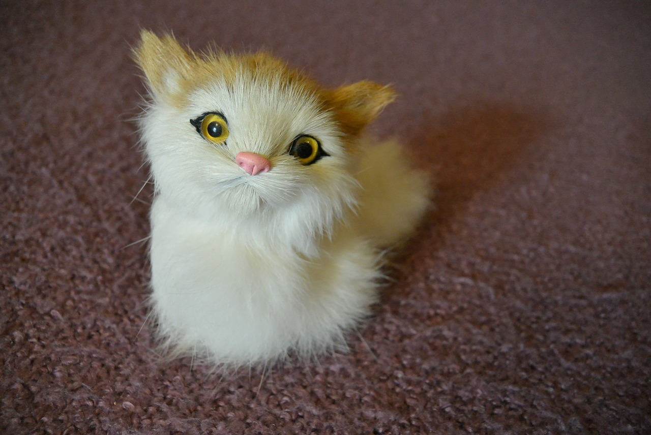 6 Fascinating Toys for Bored, Home-alone Cats.