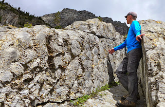 Photo: On the way back to Logan Pass we stopped to take a closer look at some stromatolites. A stromatolite is produced by the activity of ancient cyanobacteria - think of them as the fossil remains of colonies of cyanobacteria.