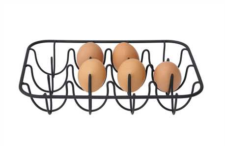http://www.mypetchicken.com/images/product_images/Popup/Metal%20Wire%20Egg%20Holder.jpg
