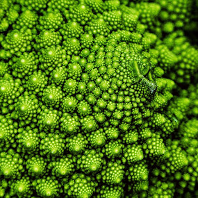by Ian Popple - Abstract Patterns ( abstract, patterns, cauliflower, food,  )
