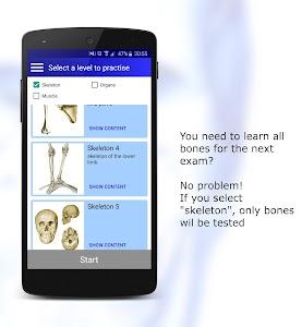 Anatomy Quiz Pro screenshot 6