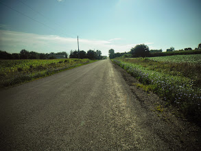 Photo: Day 45 London ON to Brantford ON Aug 2 2013 Good country roads