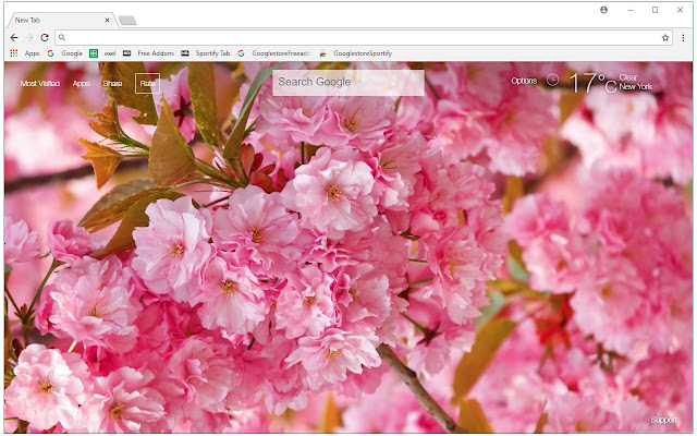 Cherry Blossom HD Wallpapers New Tab Themes