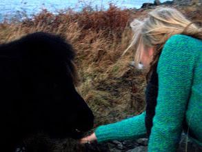Photo: Kristen befriending the little ponies :)