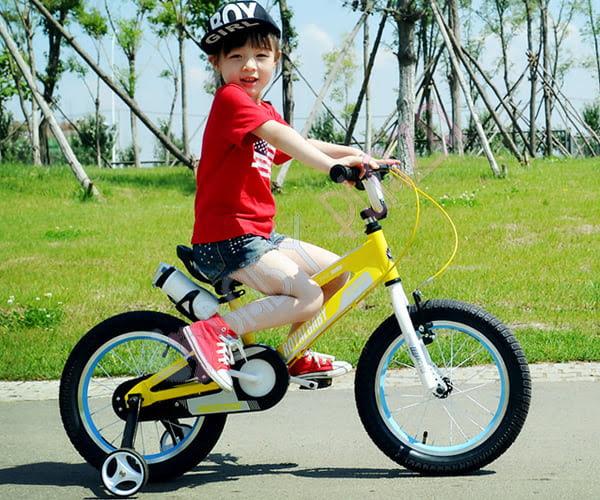 Xe đạp RoyalBaby RB-17 5