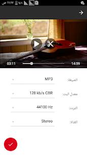 تحويل الفيديو إلى صوت (MP3, AAC, WMA, OPUS, OGG) 2