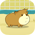 Guinea Pig .. file APK for Gaming PC/PS3/PS4 Smart TV