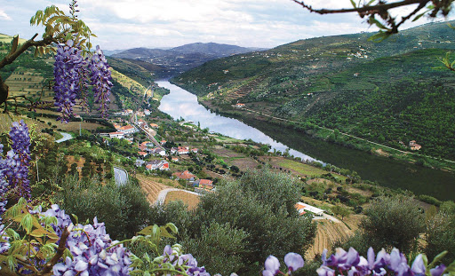A look at the Douro River Valley, the rich wine-growing region in Portugal.