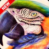 Amazing Bird Wallpaper