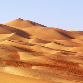 Changing sands by Andrea Willmore - Landscapes Deserts ( sand, red, patterns, desert, oman, empty quarter, liwa, abu dhabi, landscape, saudi arabia, colours )
