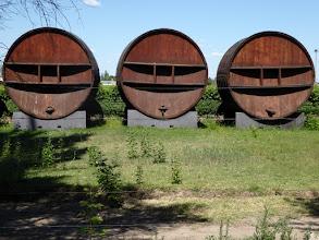 Photo: unzählige Weinanbaugebitee rund um die Stadt