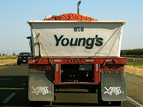 Photo: Appe truck.  I-5, San Fran to LA.