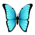 Butterfly Meadow icon