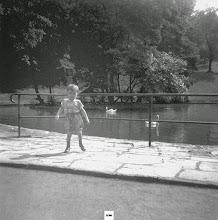 Photo: Sommer 1960: Die Enteninsel im Schwanenteich; davor mein ääterer Bruder.