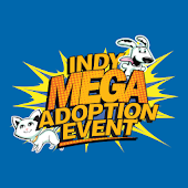 Indy Mega Adoption
