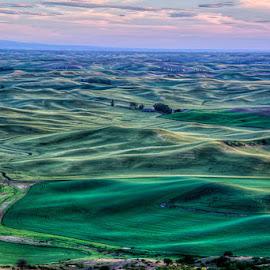 Palouse Sunset #2 by Michelle Cox - Landscapes Prairies, Meadows & Fields ( palouse, sunset, landscape,  )
