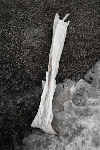 julie-fischer-07
